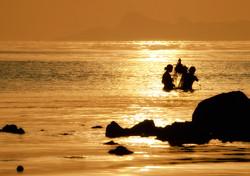 golden hour sunset fisherman at sea