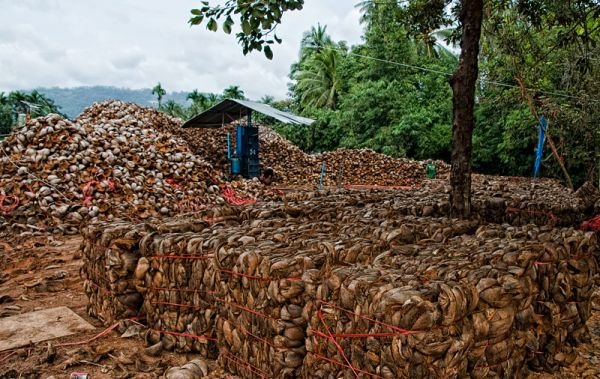 coconut factory on Koh Samui