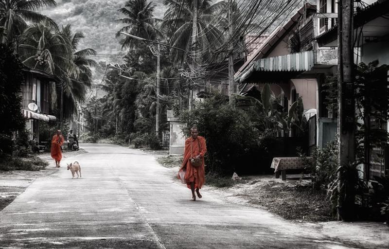 monks alms thailand koh samui