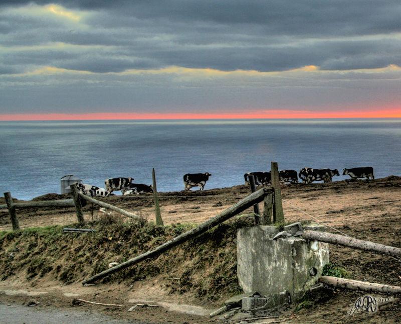 Açores Azzorre Miradouro