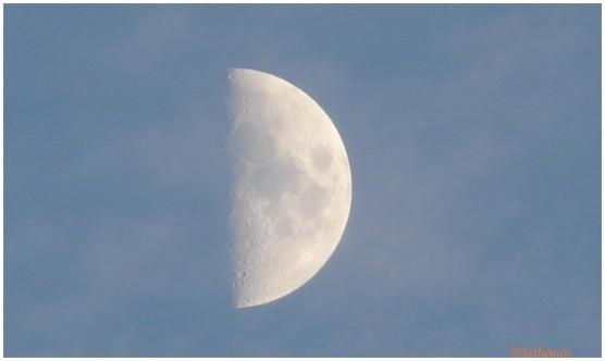 Demie-lune