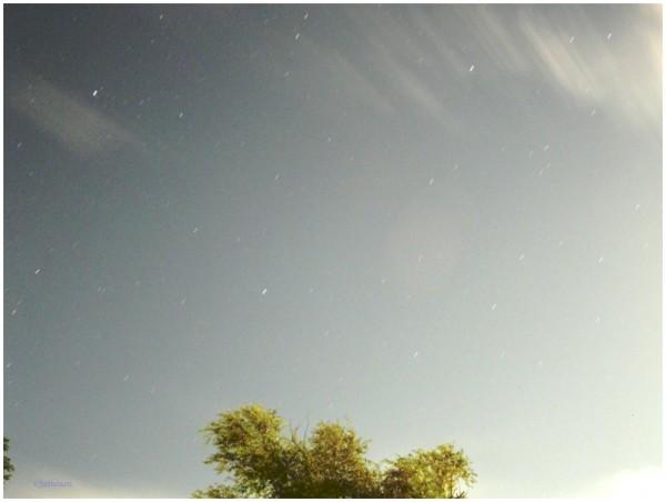 Moonlight#3