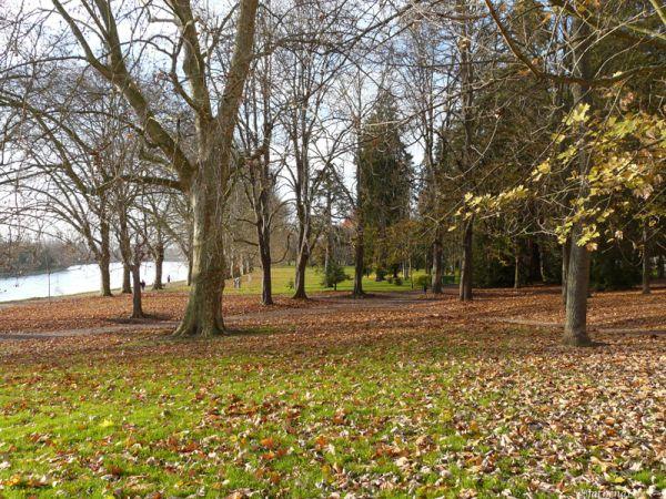 Parc des bourins, Vichy