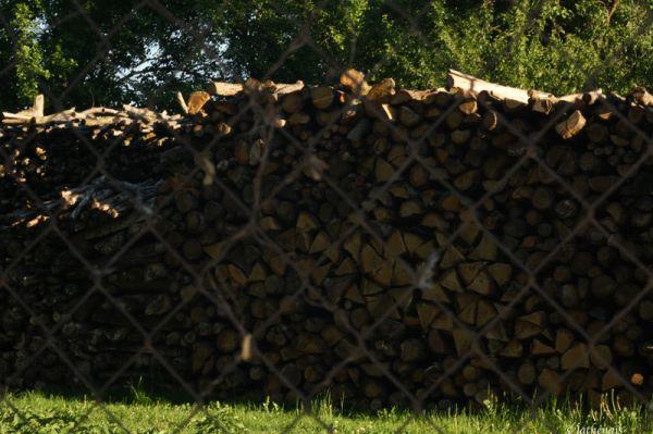 Du bois pour l'hiver