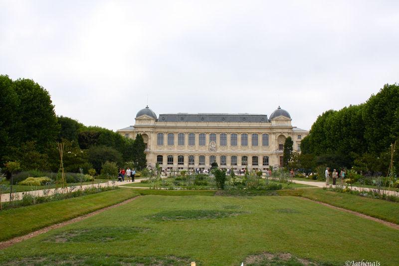 Jardin des plantes (1)