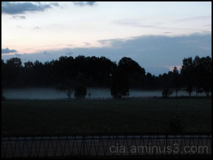 the fog is dense