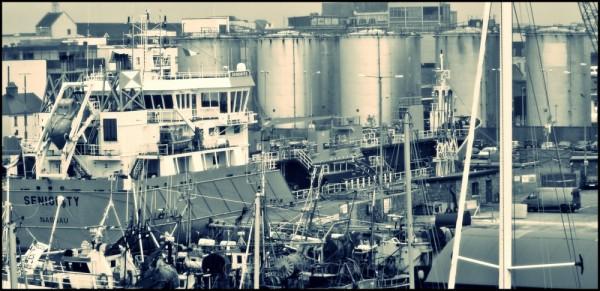 docks on strike