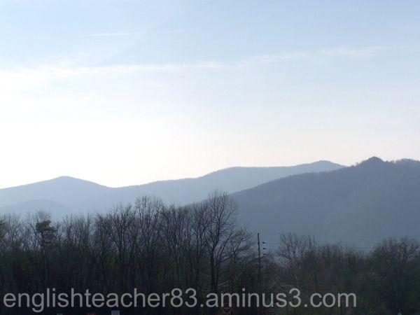 Shenandoah Mountainscape
