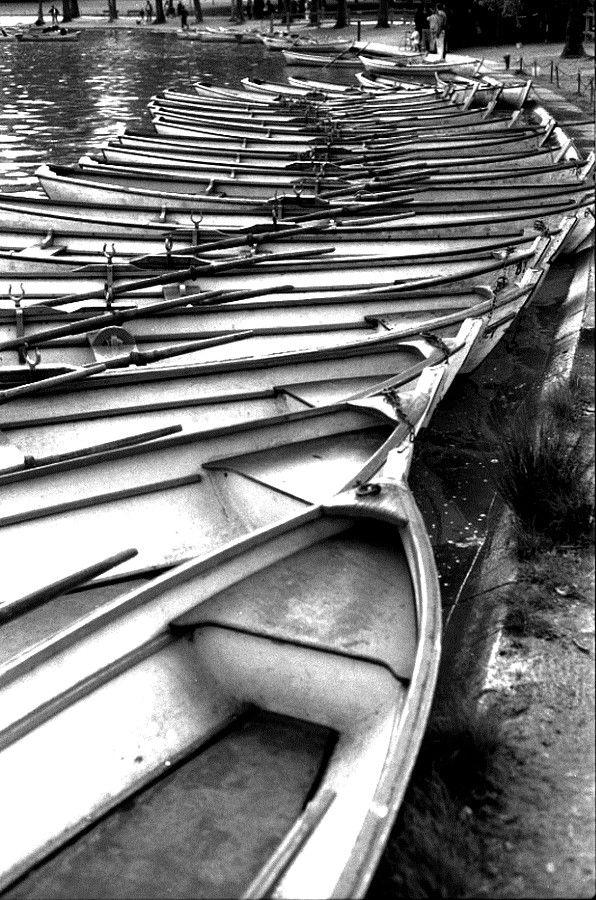 Barques, Bois de Vincennes