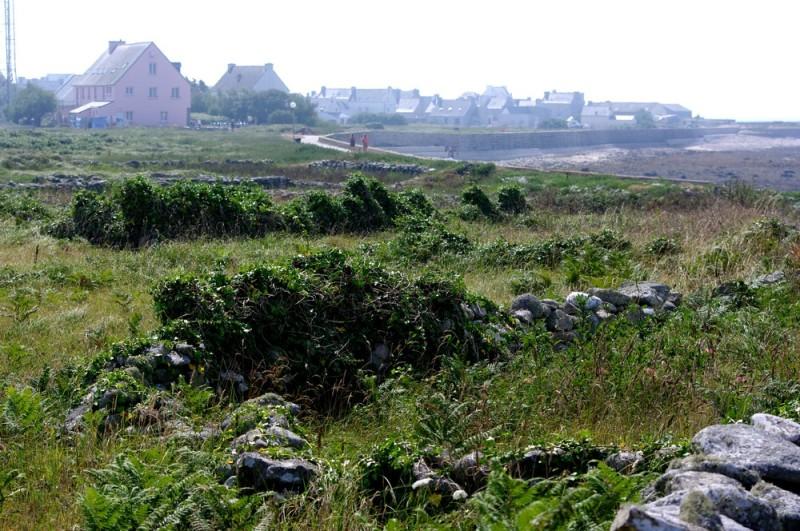 Île de Sein