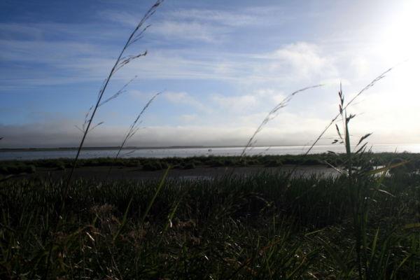 Lake Ellemere.