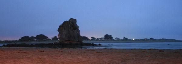 Shag rock at dawn.