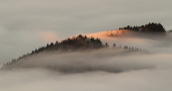 Islands in the mist .1.