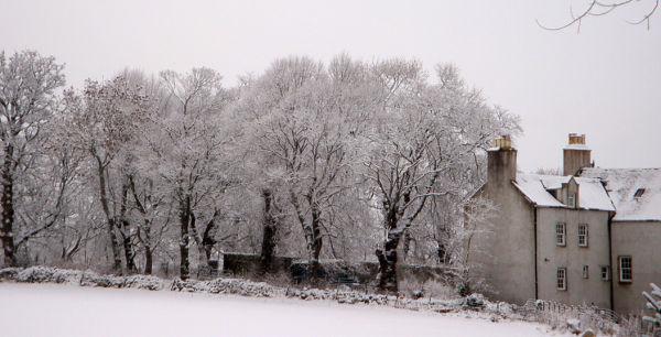 Winter view in Aberdeenshire