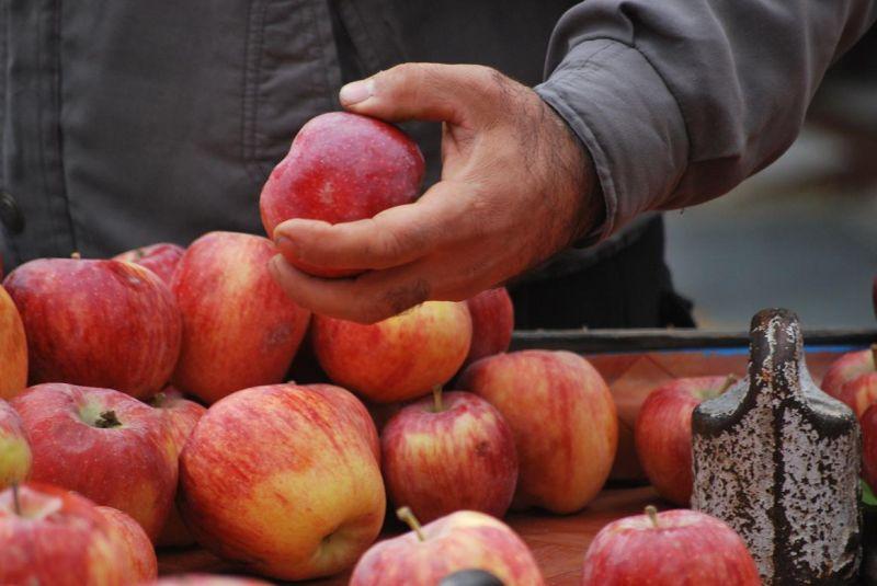 Heaven Fruit