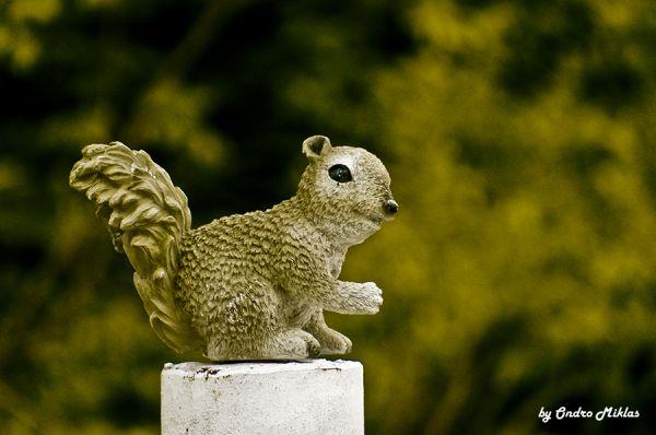 Plastic Squirrel