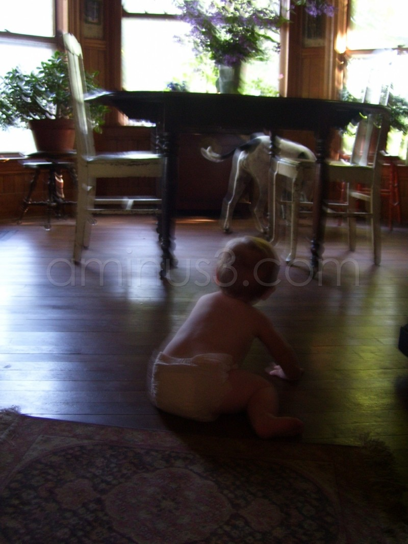 Kelman and Maizy explore the floor...