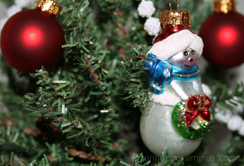 Christmas Ornament 5