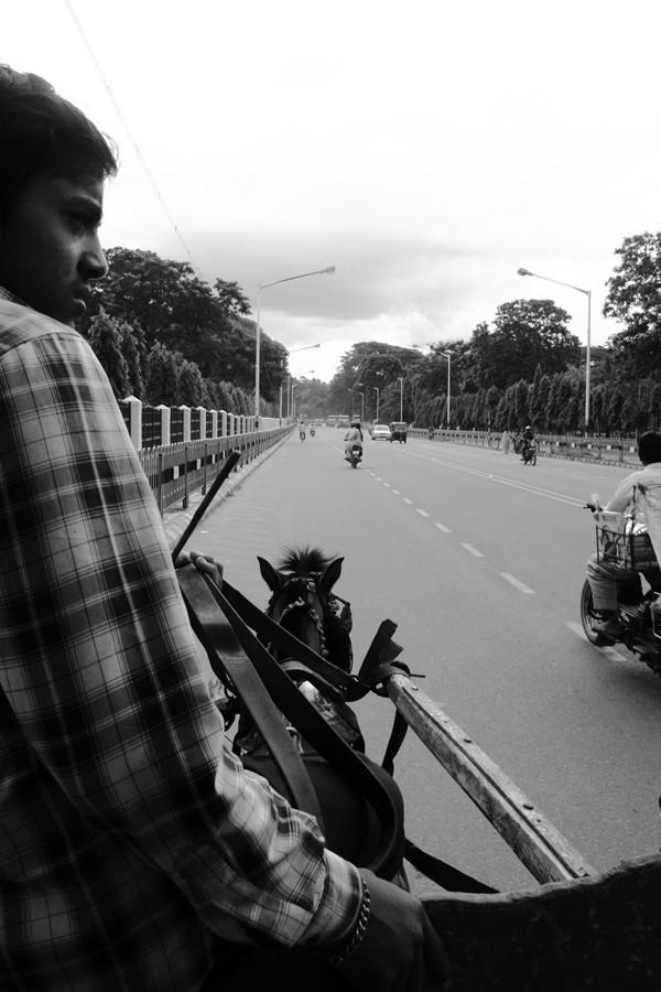 Horse Cart in Mysore