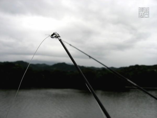 tips of fishing poles on a lake