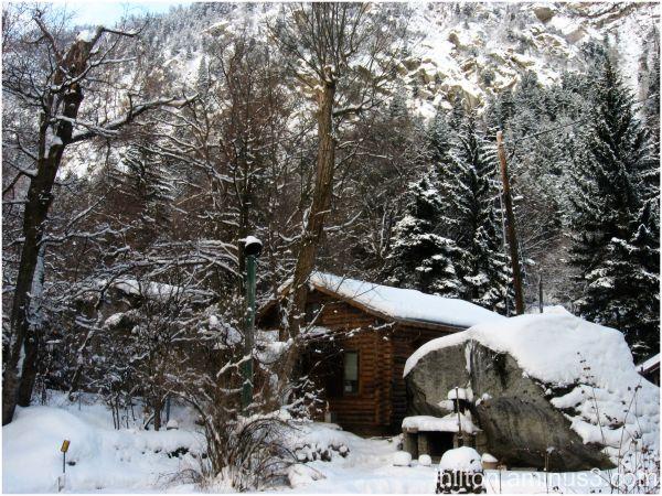 grandpa's cabin