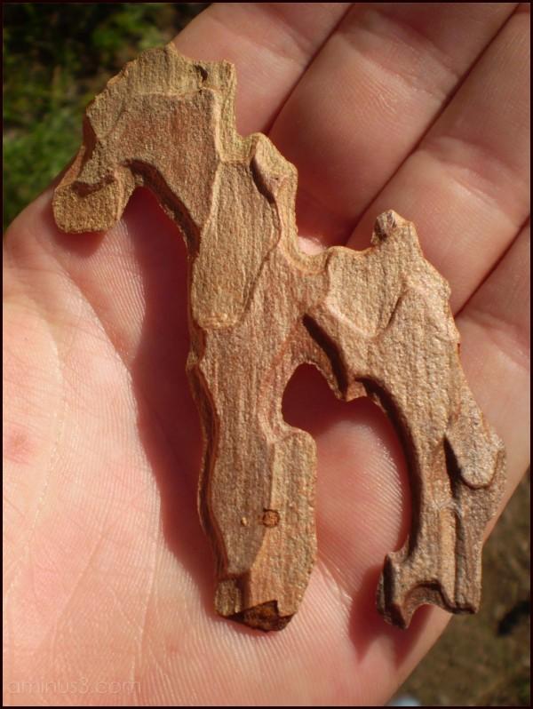 A bark horse.