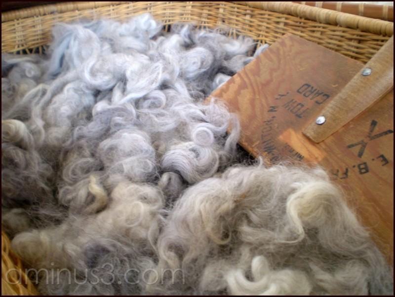 A basket of wool to card.