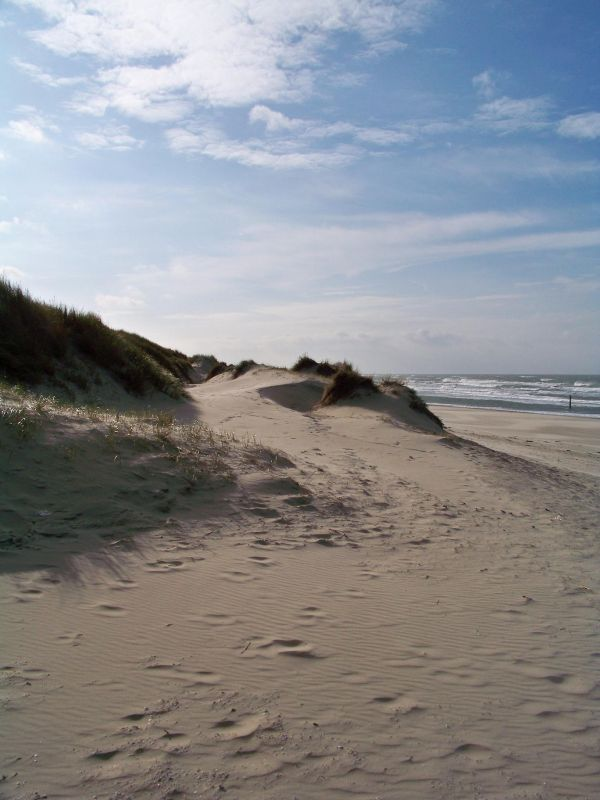 texel dune and beach 2
