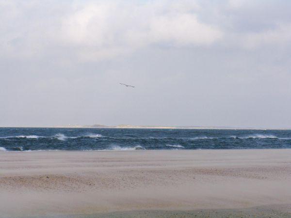 texel - view at vlieland