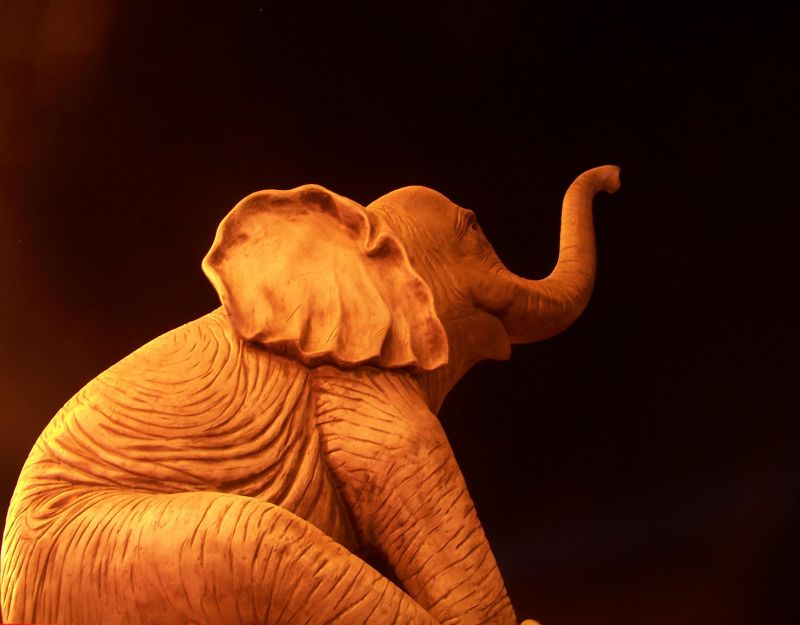 good night elephant