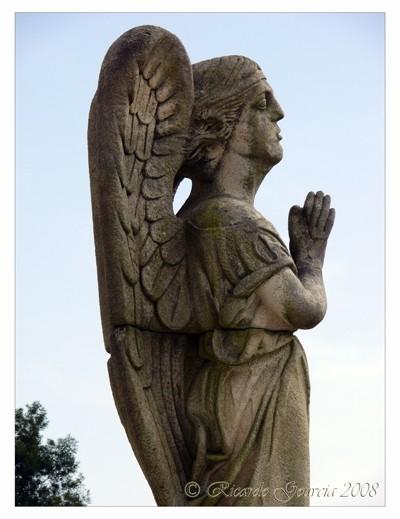 Fallen Angel I