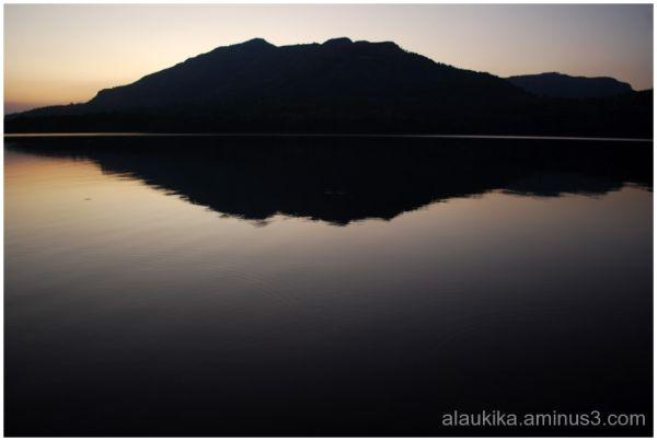 Reflection Land