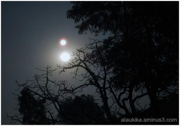 Night of the Dark Full Moon