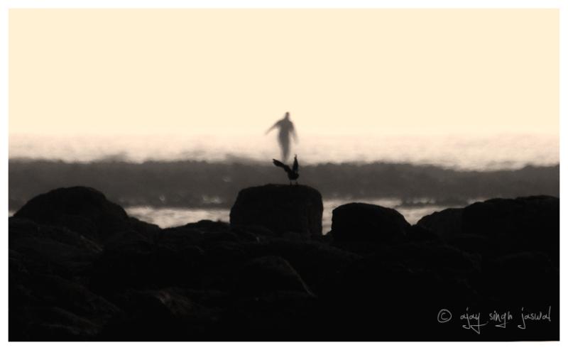 Ghost of Bird's Past