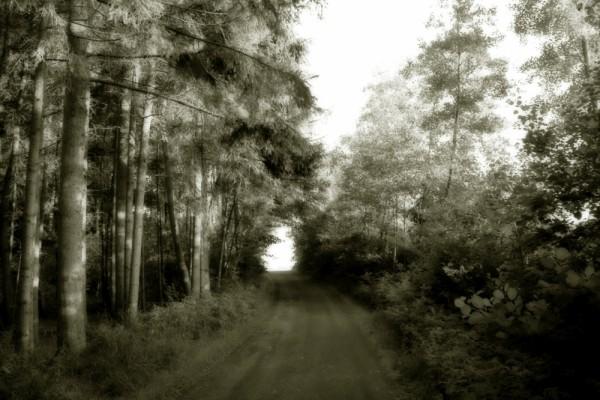 Road in Kemnath.