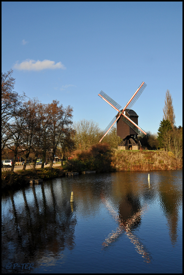 Thereto which mill.