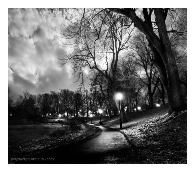 Promenade de nuit
