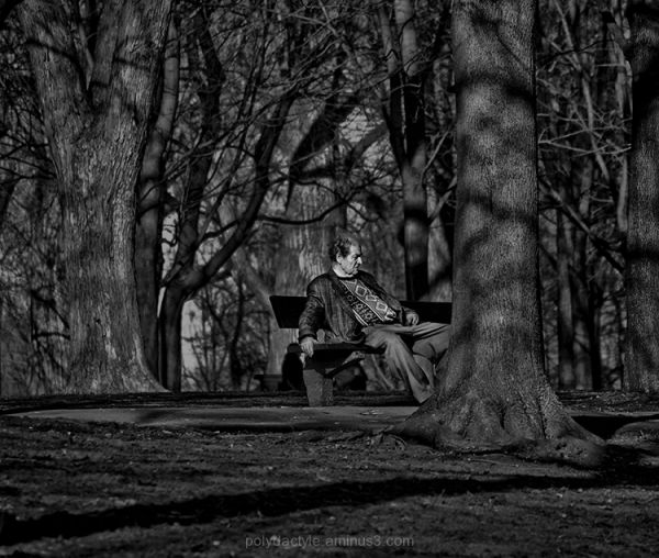 Men and trees