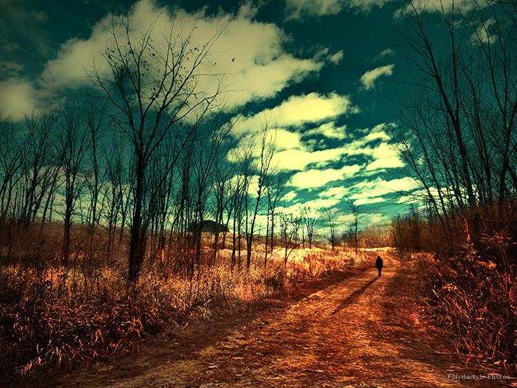 Automn Way