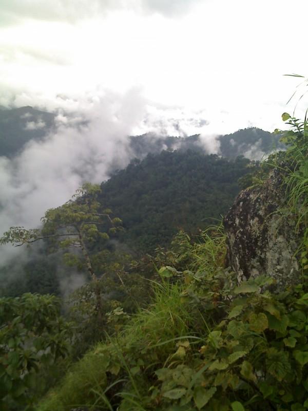 westren ghats india