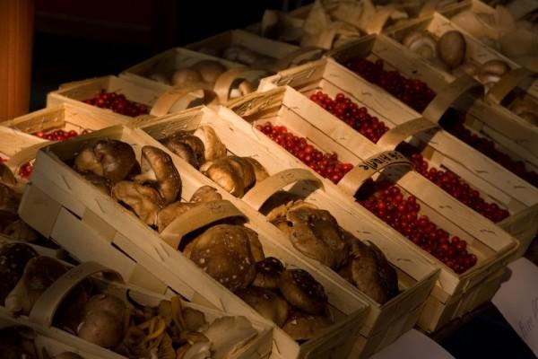 Champignons et fruit de bois