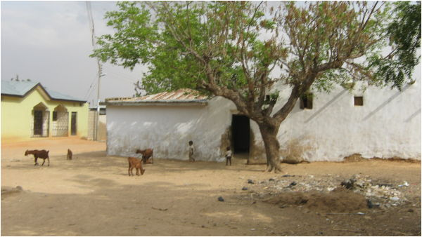 Village scene. Nigeria