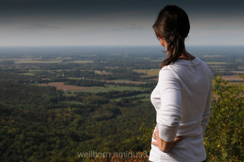 Piney Point Trail Overlook