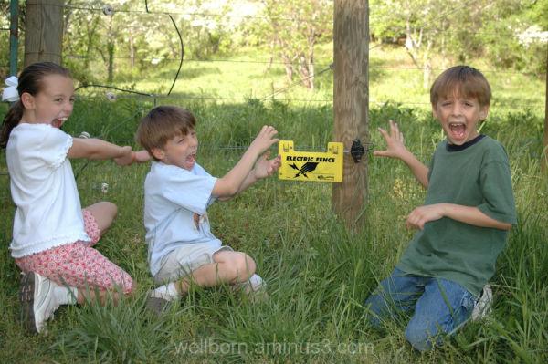 Danger - Electrical Fence and Children - Danger