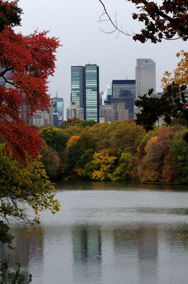Central Park in the fall...