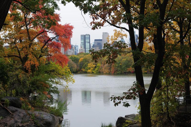 Central Park...again....