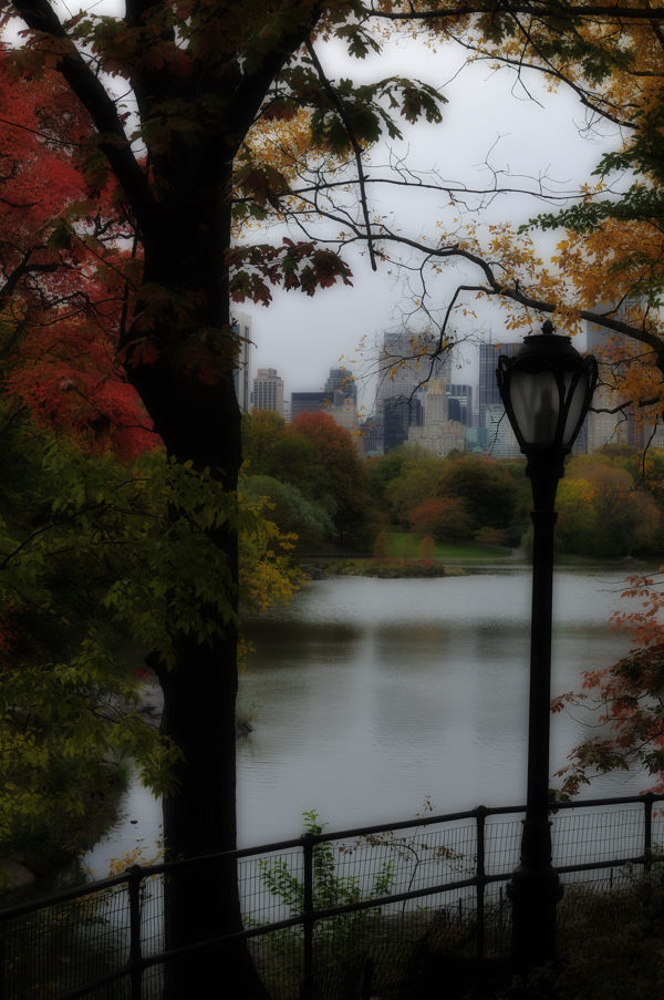 Central Park in the fall.