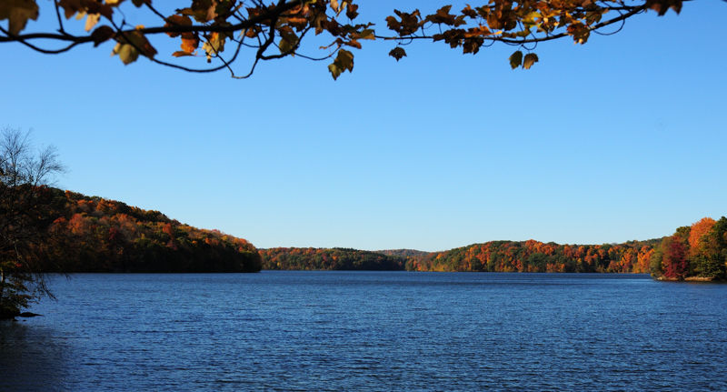 Fall colors around the lake...