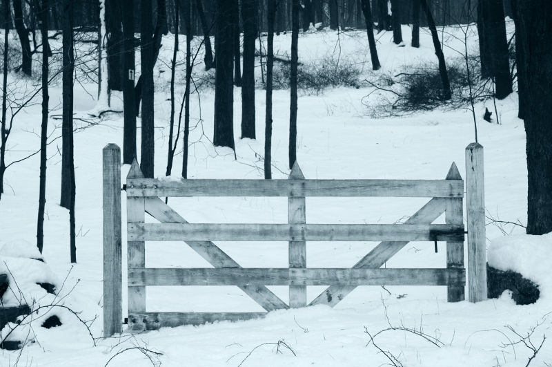 Gate in the snow.