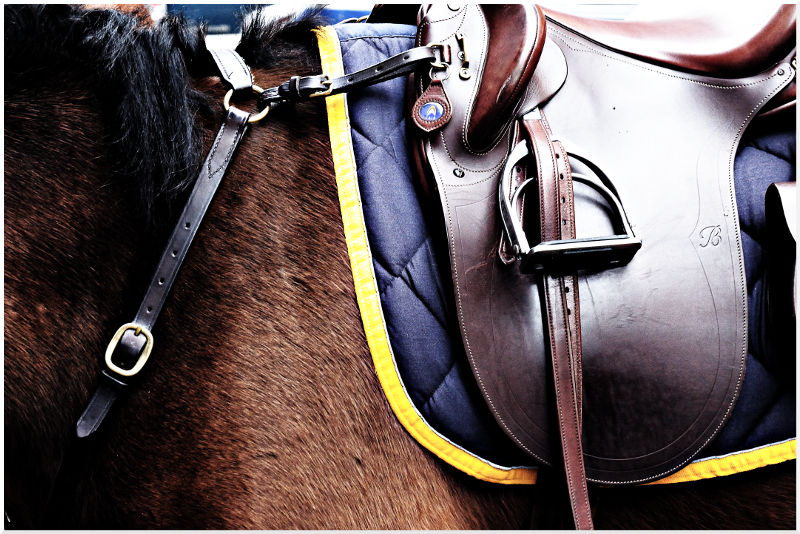NYPD Horse Saddle
